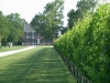 chatham-vineyard_mini_0